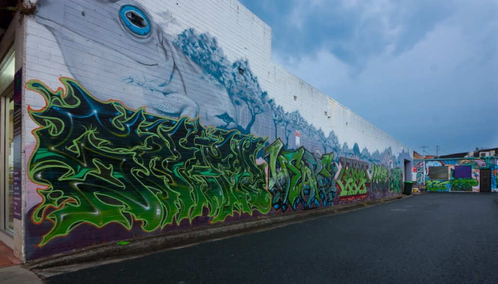 Coffs Harbour Street Art Image by Paul Lakin