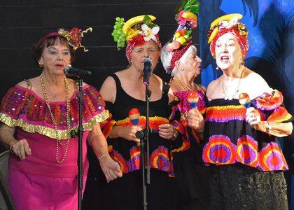 Arts Mid North Coast Creative Ageing Festival